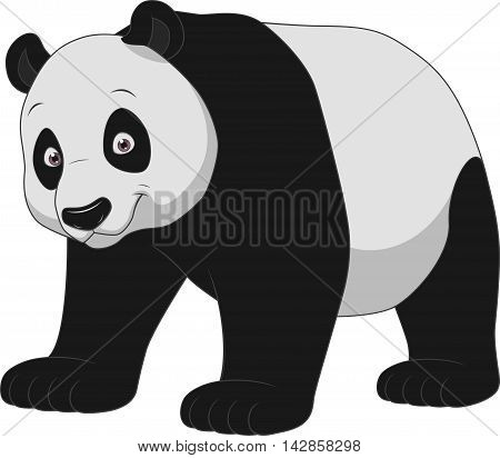 Vector illustration adult funny panda smiling on a white background