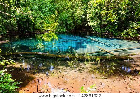 Sa Nam Phut is beautiful spring pool formed from the hot spring under the earth crust which is indigo blue and pop op on the time in the forest national park at Krabi province Thailand