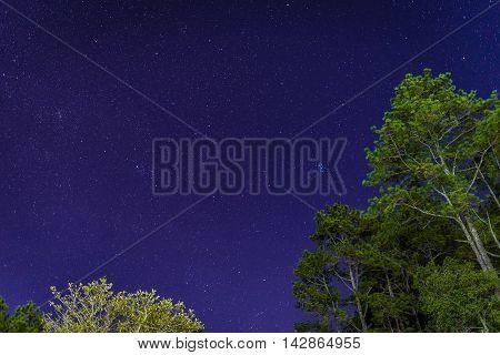 star in bluesky at Phukradueng national park : Loei, Thailand