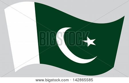 Flag of Pakistan waving on gray background. Pakistani national flag.