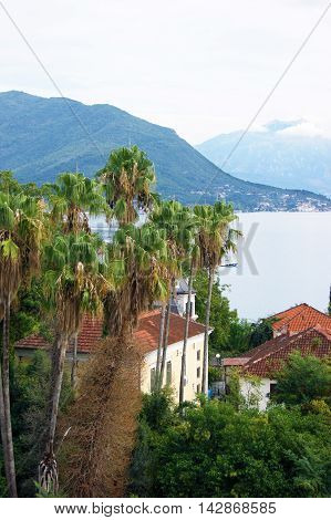 Summer landscape of resort town of Herceg Novi, Montenegro