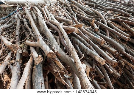 close up of Pile of wooden trucks
