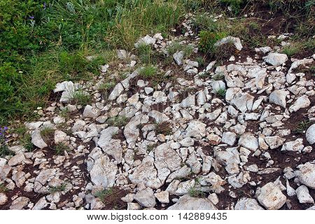 white stones and green grass on the wild stony ground