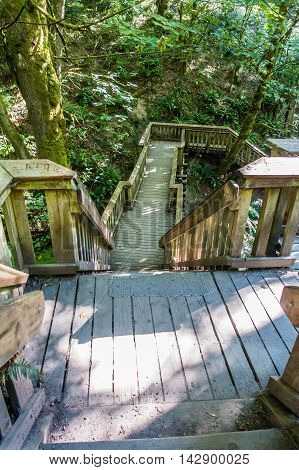 Stairs lead down to a bridge over a stream at Saltwater State Park in Washington State.