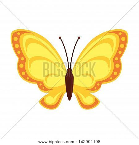butterfly animal insect animal wings fly front open spring artistic vector illustration isolated