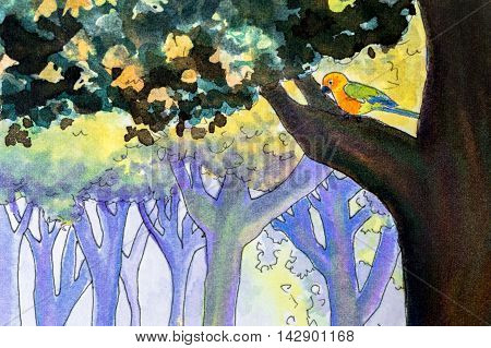 Original watercolor painting of a Jenday conure parrot in a woodland scene.