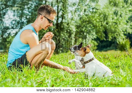 Dogs And Owner Training
