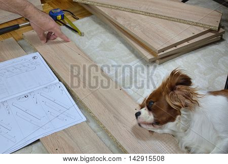 Man Assembling A Drawer With A Help Of His Dog