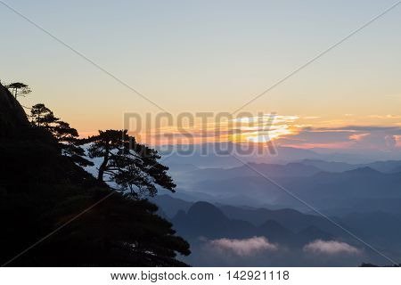 Mountain landscape with trees on a clear day above the clouds at sunrise in san qing China