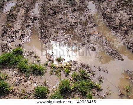 Mud puddle after heavy rain in a public park Australia 2016