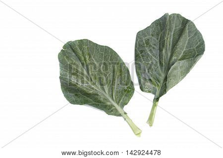 Chinese kale fresh vegetable leaves a  broccoli and Water drop. on white background.
