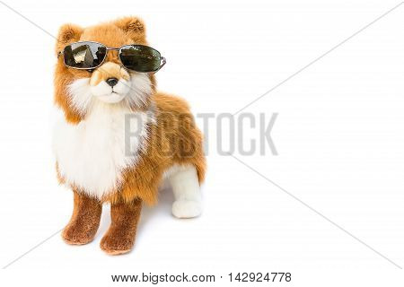 Dog wearing Black sunglasses. beautiful toy dog on white background Dog Plush toy for children : the gift to swain Valentine.