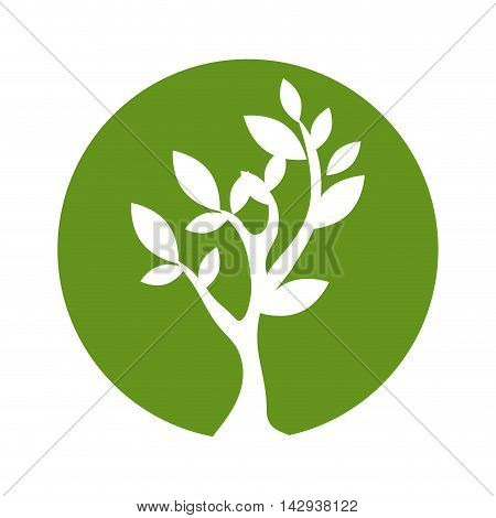 green plant leaves ecology environmental natural bio vector illustration isolated