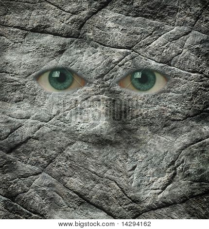 The Stoney Stare Of A Rock Face