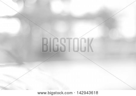 White blurred abstract background. grey abstract bokeh background. soft backdrop of nature abstract background. used for background