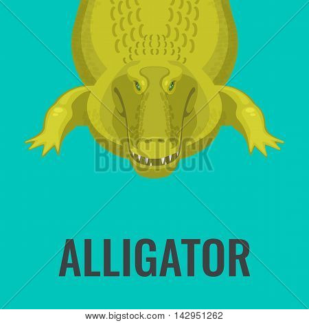 Dangerous green alligator is waiting for lunch, colorful flat vector illustration