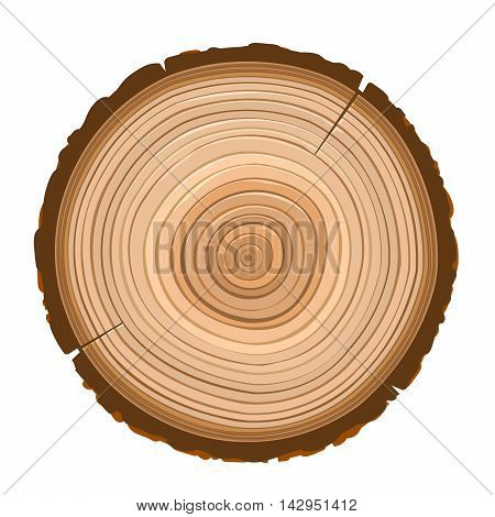 texture of sawn wood dark brown object isolated
