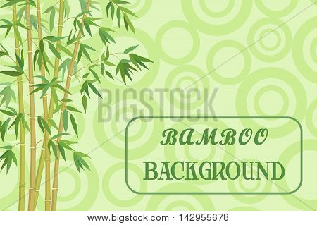 Bamboo Stems with Green Leaves on Background, Abstract Pattern with Ring. Vector