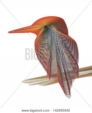 Lined illustration design of a colorful kingfisher