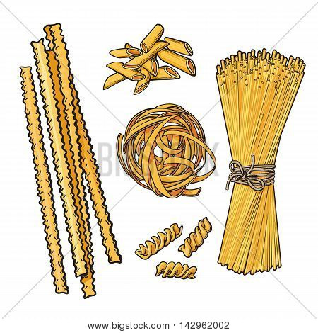 Big collection of italian pasta sketch style illustration isolated on white background. Set of spiral penne spaghetti mafalda pappardelle tagliatelle pasta. Different types of italian noodles