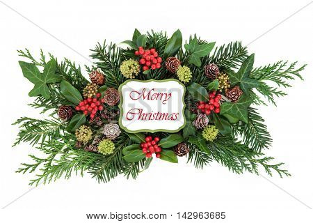 Merry christmas sign with flora decoration of holly and red berries, ivy, pine cones, cedar cypress and fir leaf sprigs over white background.
