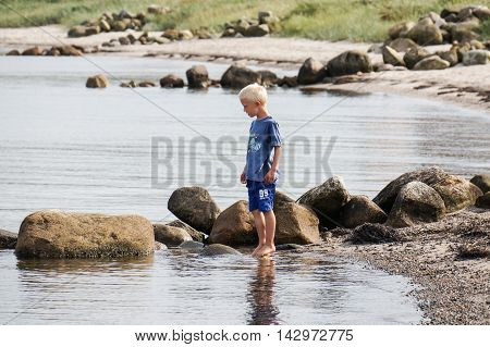 A little boy goes with his feet in the water on the beach and looking for clams and crabs