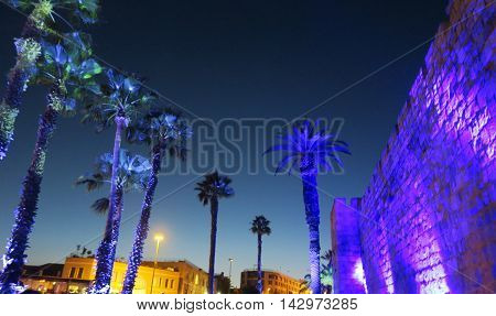 Palm trees and a big wall hit by lights with greenish sky on the background. Jerusalem, Festival of lights May/2016