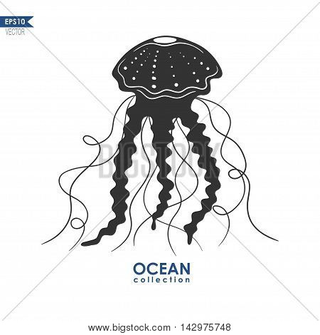 jellyfish silhouette isolated on white, vector illustration of jellyfish