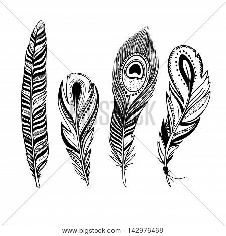vector feathers, hand drawn decorative bird feathers with ornaments, black and white illustration, boho style