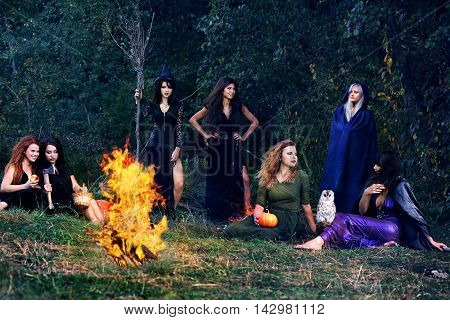 witches on the Sabbath arrived in the forest