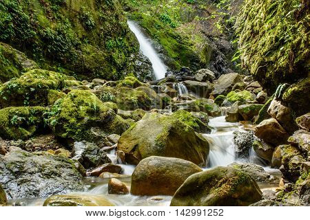 Attractive Waterfall And Green Moss Stone In Forest