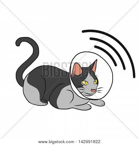 Cat with radar cartoon illustration on white background