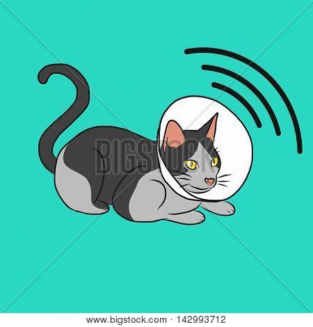 Cat radar cartoon illustration on green background
