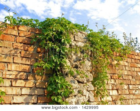Brick_Fence
