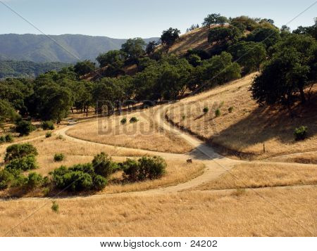 California Hills At Summer