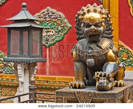 Lioness keeping sentry, China