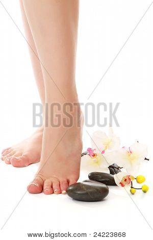 Image of beautiful female legs isolated on white background