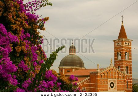 Church And Bloom