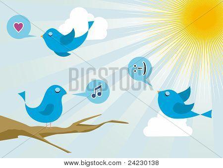 Birds At Social Media Sunrise