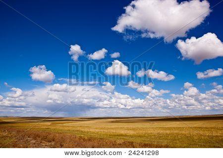 Grassland Raining