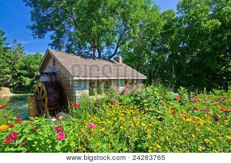 Water Mill And Flowers