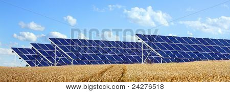 Solar energy panels on a wheat field against sunny sky.