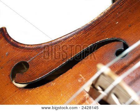 Violoncello On A White