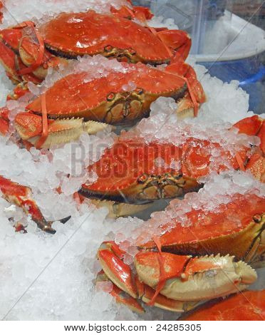 Crabs on Ice