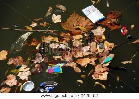 Trash Pollution Vs Nature