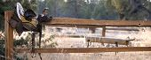 foto of split rail fence  - Old saddle on split rail fence with roping dummy in the background - JPG