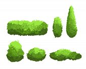 Vector Illustration Set Of Garden Green Bushes And Decorative Trees Different Shapes. Shrub And Bush poster