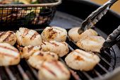 Delicious Sizzling Sea Scallops Grilling On A Charcoal Grill poster