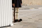 picture of evzon  - Greek guardian with traditional uniform at the monument of unknown soldier - JPG