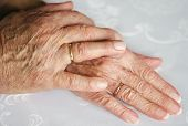 image of wedding couple  - Two hands of an old couple - JPG